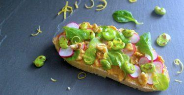 recette-tartine-pain-houmous-lentille-corail-feve-radis-mache