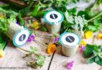 Plantui-jardin d intérieur-semis-graine-aromatique-cuisine-recette healthy