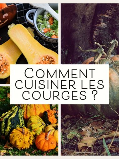 recette healthy cuisiner courges